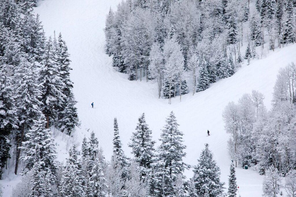 Salt Lake City Skiers