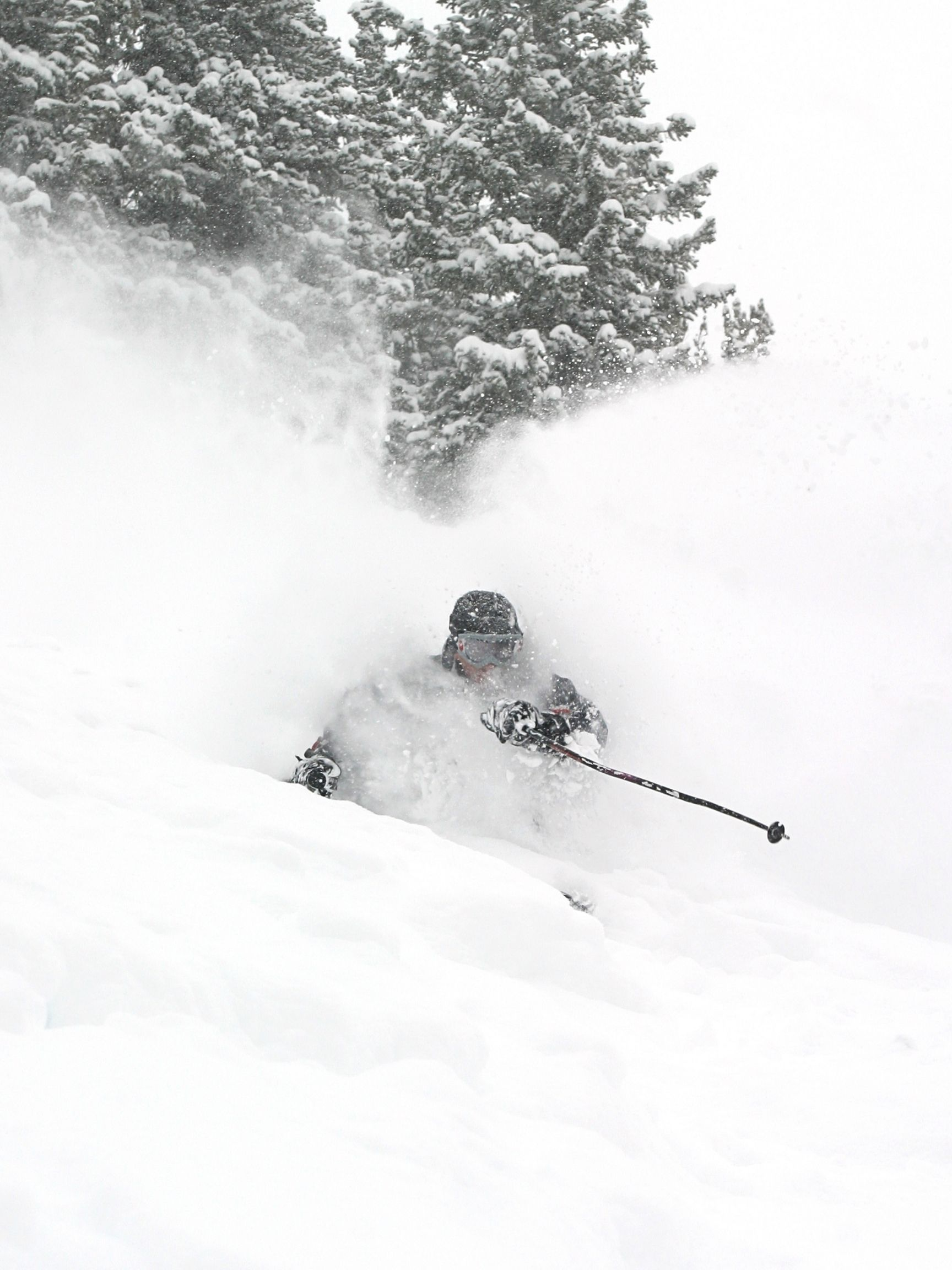 Skiing in Deep Utah Powder
