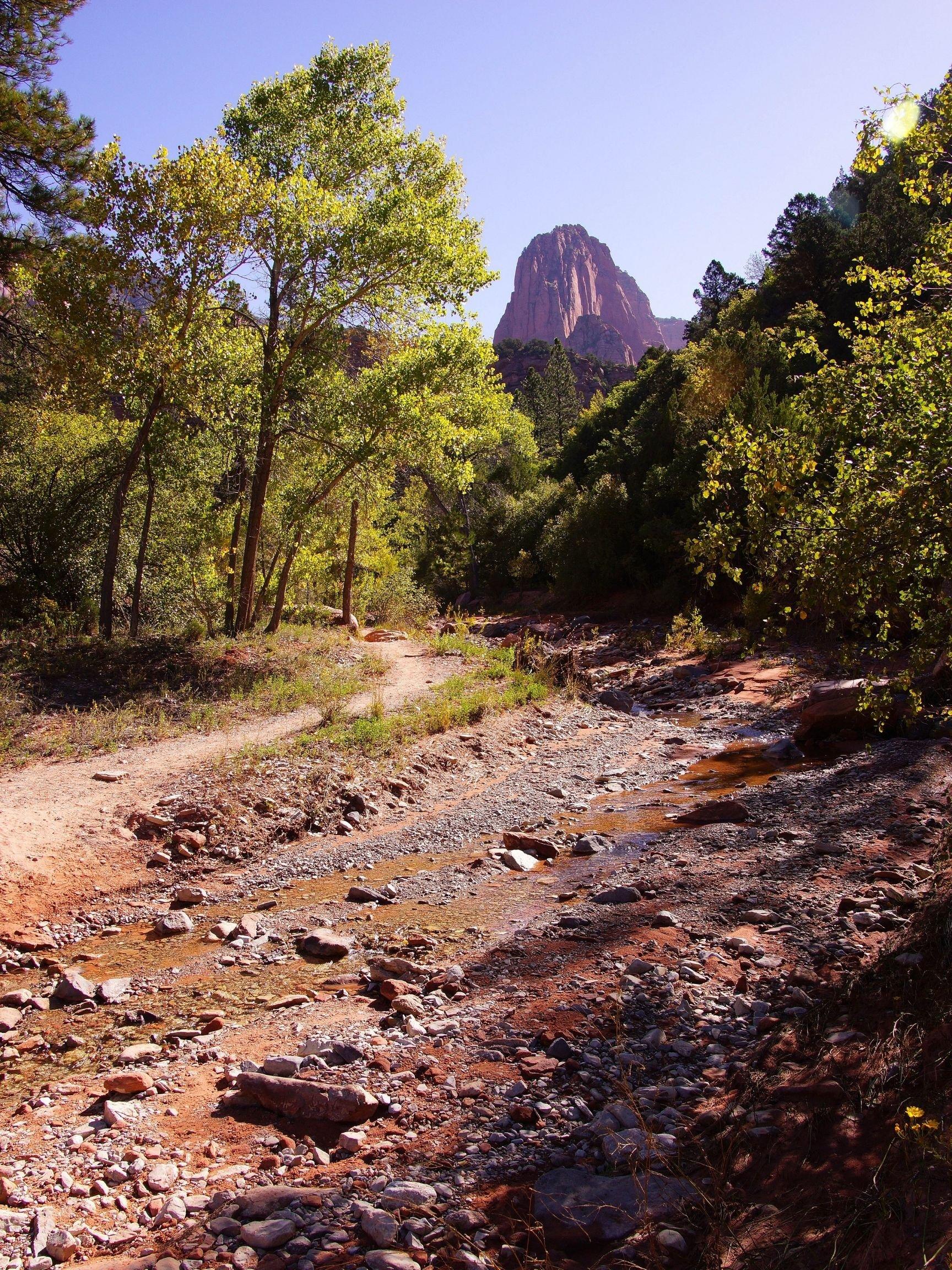 Taylor Lake Creek Trail Hike in Zion