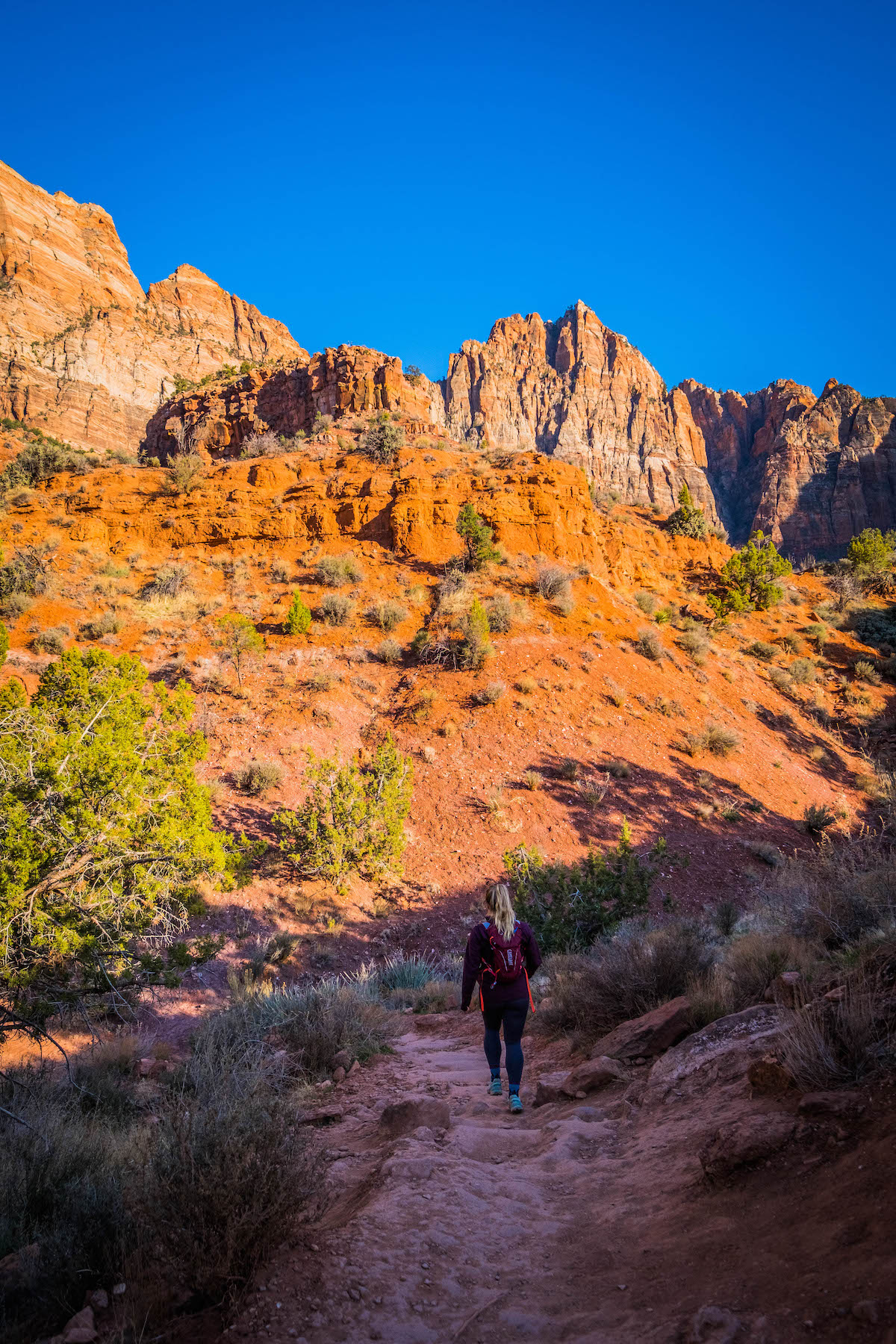 hiking Watchman trail in zion
