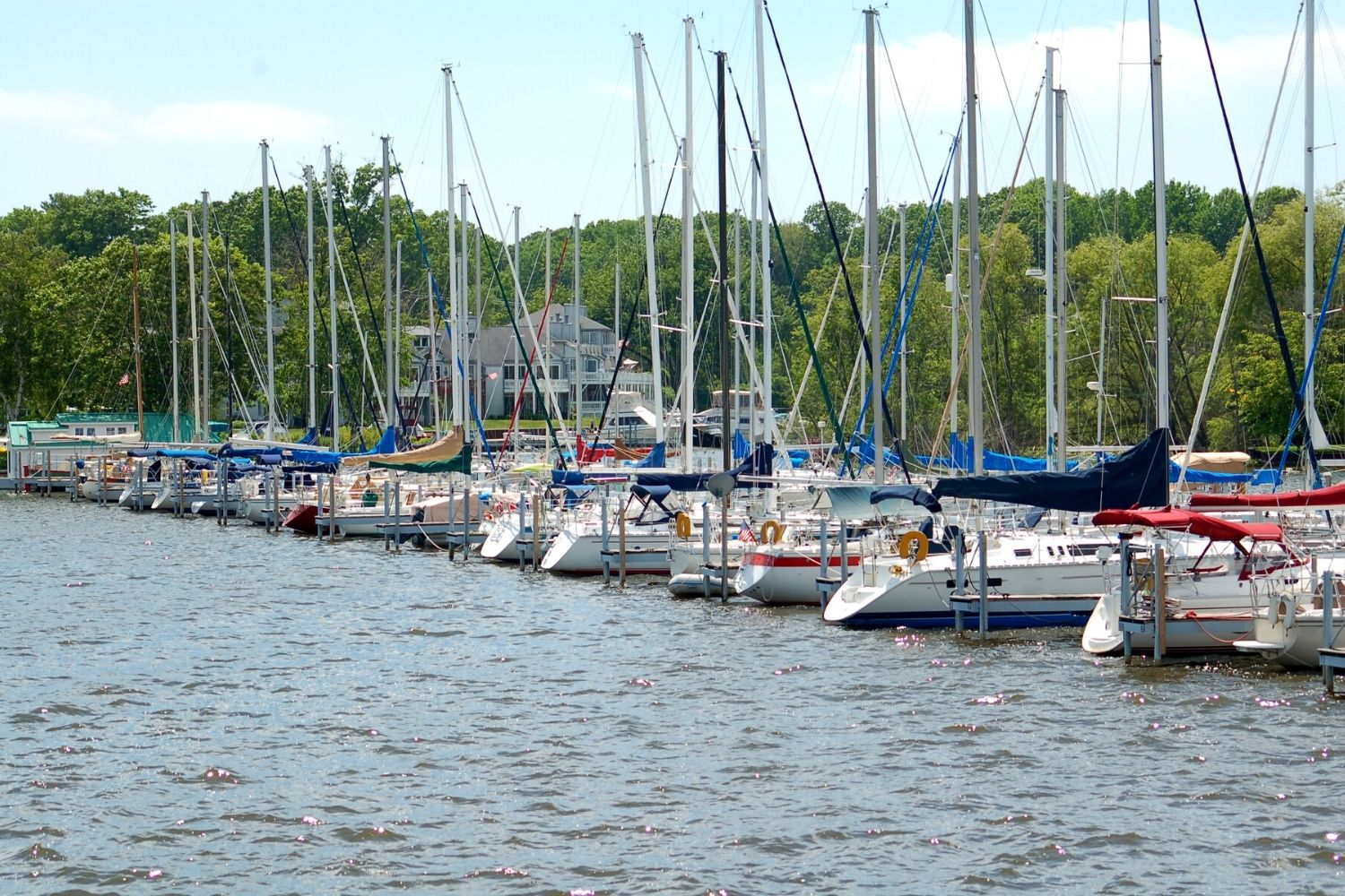 things to do in saugatuck