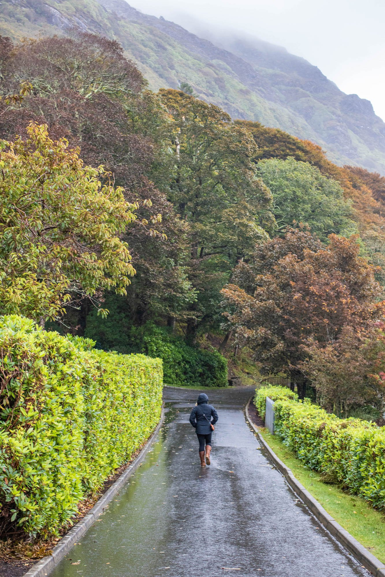 Tash Walking in Rain in Ireland