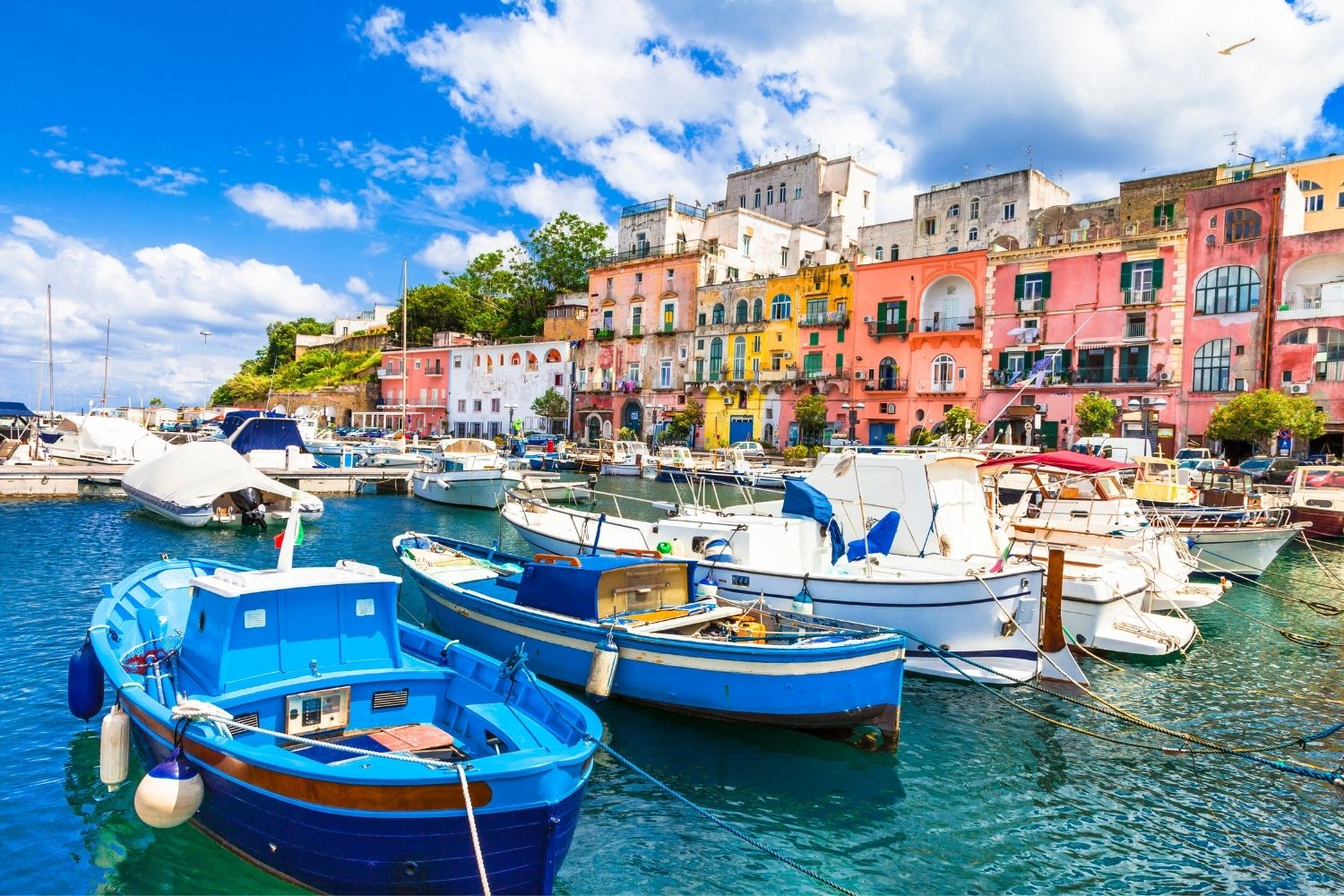 Capri harbor with colorful boats and houses