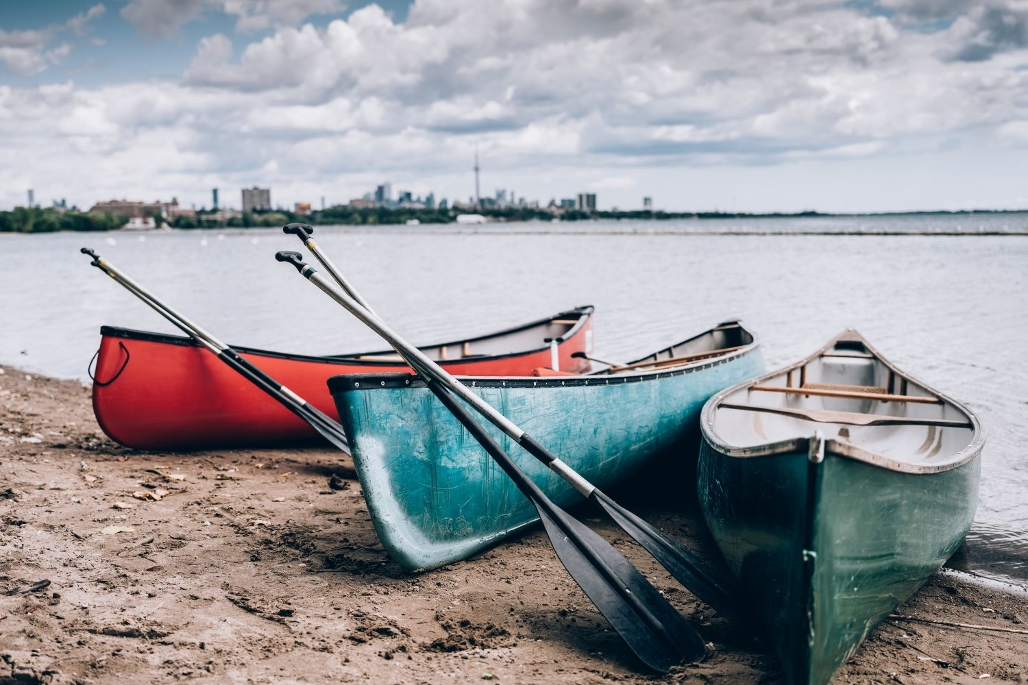 Canoes along Lake Ontario with Toronto in the background