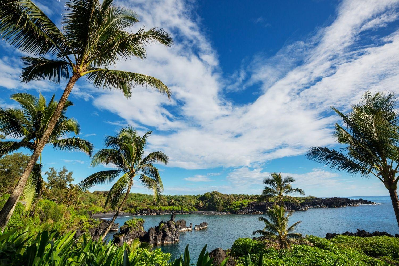 Gorgeous Maui Landscape